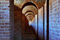 tunnelvision